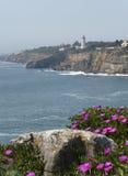 Portugese coastal scenery Stock Image