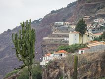 The portugese island of madeira. The City of funchal and the portugese Island of madeira Royalty Free Stock Photo