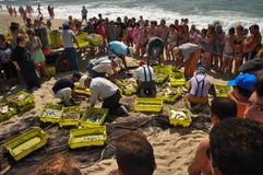 Portugese vissers Stock Foto