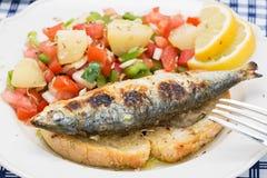 Portugiesische Art gegrillte Sardinen mit Salat Lizenzfreies Stockbild