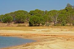Portugiesische maquis gestalten auf dem Strand von Montargil See landschaftlich Lizenzfreies Stockfoto
