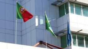 Portugiesische und brasilianische Flaggen, die nebeneinander auf ein modernes weißes Gebäude fliegen stock video footage