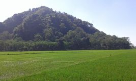 Portugis benteng горы Jepara Индонезии белые стоковое изображение rf