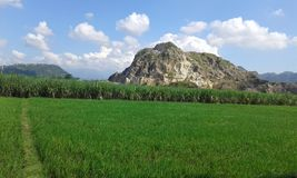 Portugis benteng горы Jepara Индонезии белые стоковая фотография rf