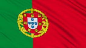 Portugisisk flagga. stock video