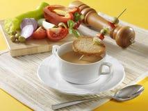 Portugisisk gazpacho Arkivbild