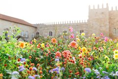The Garden of Santa Barbara alongside the eastern wing of the historical Archbishop`s Palace. Colorful flowers under the bright su. Portuguese attractions. View royalty free stock photos