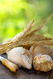Portuguese bread and  spikes of wheat. Royalty Free Stock Image
