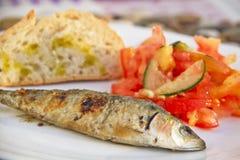 Portuguese Cozine sardine dish. Portugal and it´s cozine. Igredients and colors from portuguese food. Sardine dish Royalty Free Stock Photo