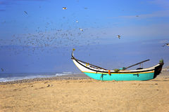 Portuguese fishing boat Royalty Free Stock Images