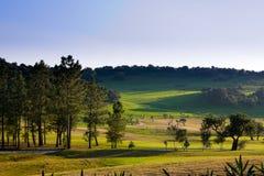 Portuguese landscape Stock Photos