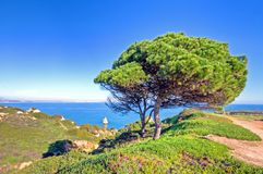Portuguese landscape near Lagos in Portugal Stock Photos