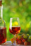 Portuguese rose wine. Stock Images