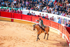 Portuguese style bullfighting Royalty Free Stock Photo