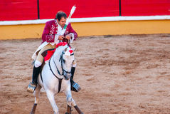 Portuguese style bullfighting Royalty Free Stock Images