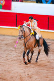 Portuguese style bullfighting Stock Photography
