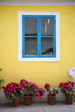 Portuguese style colorful window in taipa macau Royalty Free Stock Photo