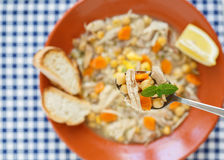 Portuguese traditional chiken soup Stock Image