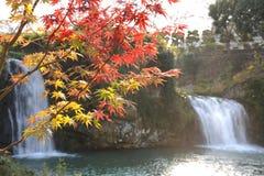 Poryk spadku parka punkt Japonia Obrazy Royalty Free