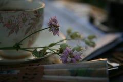 Porzellantasse tee und Perlenopergläser im Sonnenuntergang beleuchten stockbild