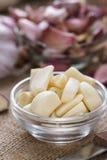 Porzione di aglio sbucciato Immagini Stock