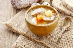 Porzione di minestra acida della segale fatta di farina di segale e di carne inacidite immagine stock