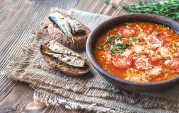 Porzione di minestra verde del pomodoro della lenticchia con i pani tostati Fotografie Stock