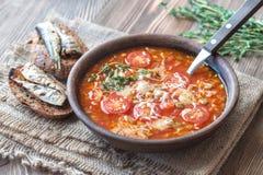 Porzione di minestra verde del pomodoro della lenticchia con i pani tostati Fotografia Stock Libera da Diritti