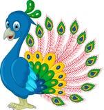 Posa del fumetto del pavone Fotografia Stock