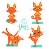 Posa del gatto di yoga Yoga Cat Vector Yoga Cat Meme Yoga Cat Images Yoga Cat Position Yoga Cat Figurine Fotografie Stock Libere da Diritti