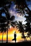 Posa dell'albero di yoga intorno alle palme Fotografia Stock Libera da Diritti