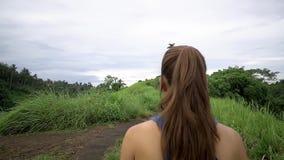 Posa di Lotus sul fondo verde della natura Vista posteriore stock footage