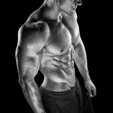 Posa di modello maschio di giovane forma fisica adatta del culturista Immagini Stock Libere da Diritti