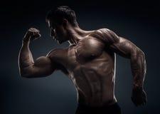 Posa di modello maschio giovane di forma fisica muscolare ed adatta del culturista Immagine Stock Libera da Diritti