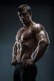 Posa di modello maschio giovane di forma fisica muscolare ed adatta del culturista Immagini Stock Libere da Diritti