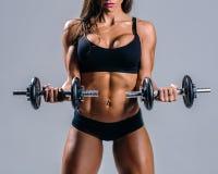 Posa femminile di giovane bella forma fisica nello studio Immagini Stock