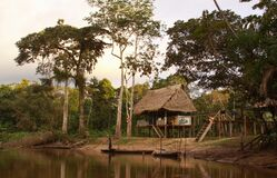 Free Posa Gloria Amazon Jungle Hut In Pacaya-Samiria Stock Image - 181674491