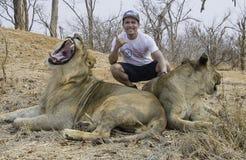 Posa pericolosa con il leone e la leonessa immagine stock libera da diritti