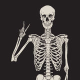 Posa umana dello scheletro isolata sopra il vettore nero del fondo Immagini Stock Libere da Diritti