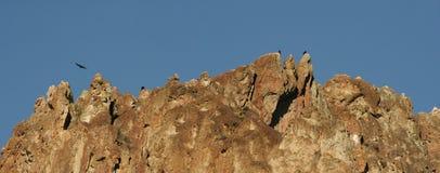 Posatoio di Ravens a Smith Rock State Park - Terrebonne, Oregon Fotografia Stock