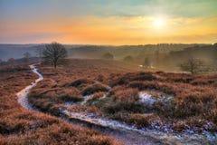 Posbank path sunrise Stock Photo