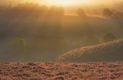 Posbank Veluwe, salida del sol fotografía de archivo libre de regalías