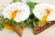 Poschierte Eier auf Toast mit Brunnenkresse Stockfotografie