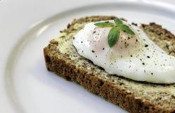 Poschiertes Ei auf frischem Brot Stockfotografie