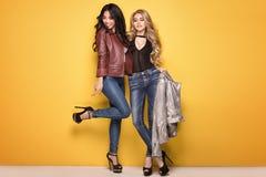 Pose à la mode de deux filles Images stock