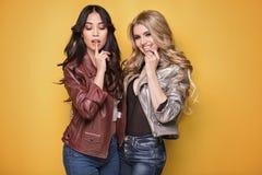 Pose à la mode de deux filles Photographie stock