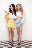 Pose adorable de deux filles Photographie stock