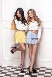 Pose adorable de deux filles Images stock