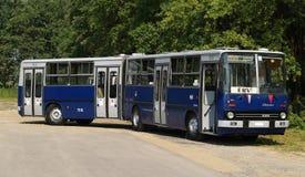 Pose articulée d'autobus de ville Images libres de droits
