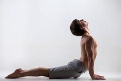 Pose ascendente do cão do revestimento da ioga imagem de stock